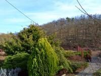 Zahrada před domem (Prodej domu v osobním vlastnictví 348 m², Silůvky)