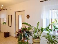 Vstupní hala (Prodej domu v osobním vlastnictví 348 m², Silůvky)