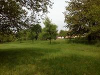 Prodej pozemku 620 m², Tečovice