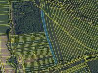 Prodej pozemku 7703 m², Veletiny