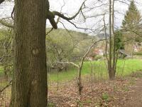 Pohled na pozemek (Prodej pozemku 1645 m², Nový Bor)