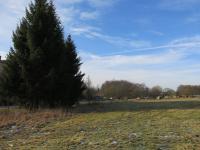 Prodej pozemku 1968 m², Verneřice