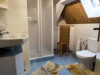 koupelna v podkroví (Prodej chaty / chalupy 290 m², Slunečná)