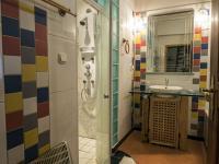 koupelna (Prodej chaty / chalupy 290 m², Slunečná)