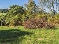 Prodej pozemku 3000 m², Volfartice