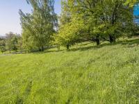 výhled z pozemku (Prodej pozemku 1454 m², Slunečná)