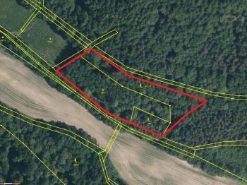 katastrální mapa - Prodej pozemku 7630 m², Skalice u České Lípy