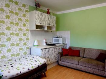 Pokoj s kuchyňskou linkou - Prodej domu v osobním vlastnictví 240 m², Nový Oldřichov
