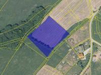 tvar pozemku - Prodej pozemku 6917 m², Svojkov