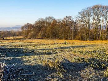 Prodej pozemku 6917 m², Svojkov