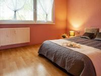 ložnice - Prodej bytu 3+1 v družstevním vlastnictví 67 m², Česká Lípa