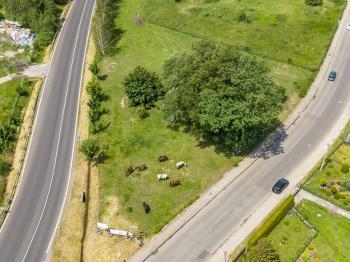 Prodej pozemku 3874 m², Zákupy