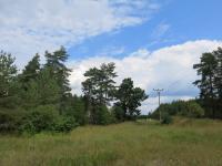 Pohled na pozemek - Prodej pozemku 18546 m², Česká Lípa