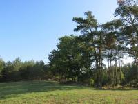 Prodej pozemku 18546 m², Česká Lípa