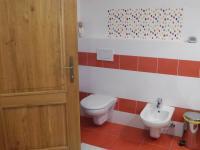 dolní koupelna s WC a bidetem (Prodej domu v osobním vlastnictví 294 m², Březová-Oleško)