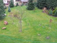 zahrada (Prodej domu v osobním vlastnictví 294 m², Březová-Oleško)