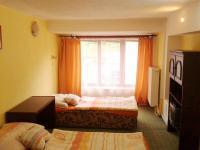 apartmán (Prodej penzionu 318 m², Březová)