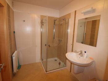 dolní koupelny - Prodej bytu 4+kk v osobním vlastnictví 114 m², Dýšina