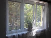 Obývací pokoj výhled (Prodej bytu 2+1 v osobním vlastnictví 54 m², Praha 3 - Žižkov)