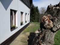 Prodej penzionu 270 m², Vítkovice