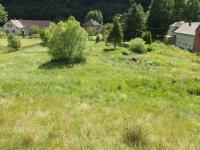 zahrada (Prodej domu v osobním vlastnictví 363 m², Albrechtice)