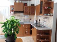 kuchyně v 1NP (Prodej penzionu 280 m², Staré Město)