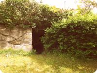 Vchod do sklepa (Prodej chaty / chalupy, Mistrovice)