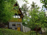 Pohled ze zahrady (Prodej chaty / chalupy 46 m², Albrechtice)