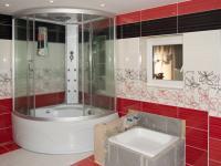 Koupelna (Prodej domu v osobním vlastnictví 349 m², Horní Čermná)