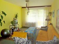 Obývací pokoj (Prodej bytu 4+1 v osobním vlastnictví 93 m², Záchlumí)