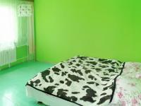 Ložnice (Prodej bytu 4+1 v osobním vlastnictví 93 m², Záchlumí)