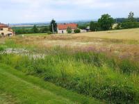 Prodej pozemku 1048 m², Podhořany u Ronova