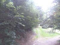 příjezdová cesta (Prodej pozemku 685 m², Česká Třebová)