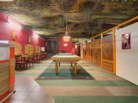 herna s barem v druhé části přízemí (Prodej komerčního objektu 1718 m², Ústí nad Orlicí)