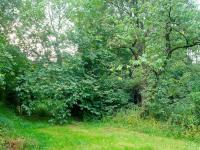 Prodej pozemku 2629 m², Lupenice