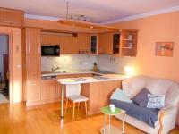 Pronájem bytu 1+kk v osobním vlastnictví 39 m², Praha 4 - Michle