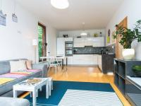 Obývací pokoj s kuchyní (Pronájem bytu 2+kk v osobním vlastnictví 50 m², Praha 5 - Košíře)