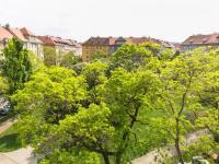 Park pohled shora (Prodej bytu 2+1 v osobním vlastnictví 91 m², Praha 6 - Bubeneč)
