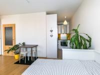 Pronájem bytu 1+kk v osobním vlastnictví 34 m², Praha 9 - Kyje