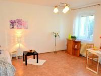 Prodej bytu 1+kk v družstevním vlastnictví 34 m², Hradec Králové