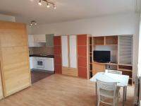Pronájem bytu 1+kk v osobním vlastnictví 34 m², Praha 9 - Letňany
