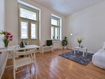 Prodej bytu 1+kk v osobním vlastnictví 20 m², Praha 1 - Nové Město