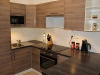 Pronájem bytu 1+kk v osobním vlastnictví, 35 m2, Ostopovice