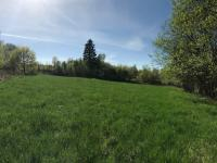 Prodej pozemku 15540 m², Borovnice