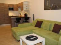 Pronájem bytu 1+kk v osobním vlastnictví 35 m², Ostopovice