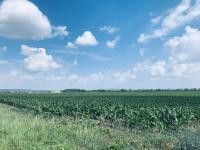 Prodej pozemku 880 m², Loděnice