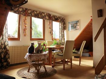 Pronájem bytu 2+1 v družstevním vlastnictví 64 m², Jablonec nad Nisou