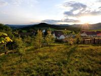 Prodej pozemku 3714 m², Kamýk