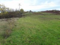 Prodej pozemku 5168 m², Křešice