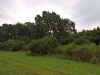 Prodej pozemku 13455 m², Malíč